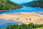 EJ-South-Africa-Wild-Coast-beach-trail-ride_0004