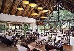 luxury-hotels-south-africa-londolozi-tree-camp-lounge_lg