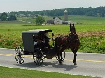 300px-Lancaster_County_Amish_03