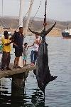 pesca_carlosaugusto_9621