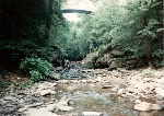 Devil'sPool_WissahickonBridge