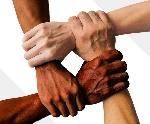 Diversity-1