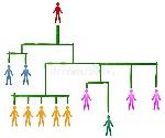 jerarquía-de-un-trabajo-en-equipo-16351685