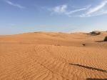 Woestijn-Dubai-2