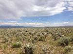2013-07-07_15_41_55_Great_Basin_Sagebrush_steppe_along_Three_Creek_Road,_in_Owyhee_County,_southwestern_Idaho