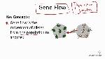 gene-flow_orig