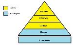 caste-system-hindu
