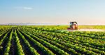 cop22-agricultura-sostenible_0