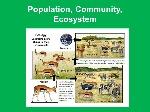 Population,+Community,+Ecosystem