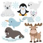 c3ccfb7141bd43339525028393c70bb9--arctic-animals-ice-age