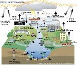agua_contaminacion_dibujo