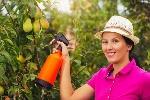 pesticidas-naturales-jardín-600x400