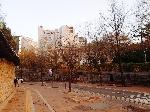 서울시립미술관 (3)