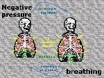 neg-press-breathing-skele_10-12-13