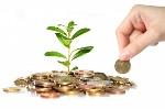 investimento-etico