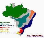 brasil-contorno (2)