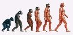 evolucion-del-hombre-1
