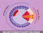 métodos-anticonceptivos-naturales