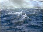 viento-del-mar-1