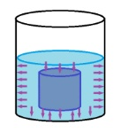 presion hidrostatica