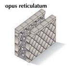 reticulatum-300x278