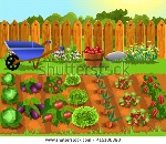 stock-vector-fruits-and-vegetables-garden-415186390