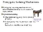 Postzygotic Isolating Mechanisms