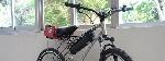 bici-head-81417