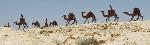 0_camel convoy sculpture_550_1