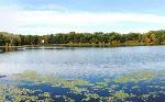 moss-lake-640x400