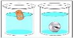 densidad y flotabilidad
