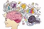 s47-ninos-Cerebro
