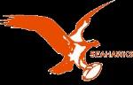Miami Seahawks