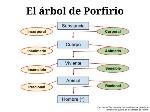 el-arbol-de-porfirio