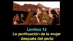 levitico 12