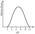 Grafik pengaruh pH terhadap aktivitas satu jenis enzim