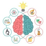 cerebro-conceptos-analitico-creativo1