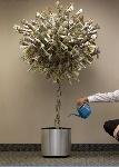 money-tree-11