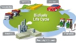 biofuellifecycle11