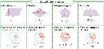 Formulario areas figuras planas