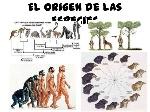 aael-origen-de-las-especies-3-638