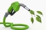 13_Biofuel