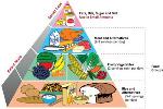 balanced-diet-chart-1
