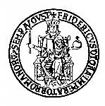 logo-federicoII-1011x1024