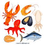 recoleccion-de-mariscos_23-2147517740