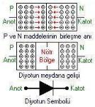 diyot1
