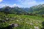 altopiano-montagna-svizzera