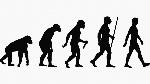 evolución-humana