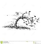 baum-im-wind-22801411