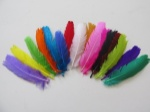 penas-coloridas-50-unidades-pena-para-apliques